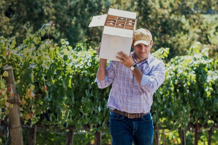 vigneron carrying a box of wine